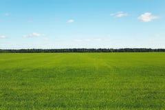 Horizontal idyllique Image libre de droits