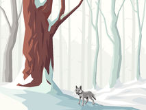 Horizontal illustration of cartoon snowy forest with wolf. Stock Image