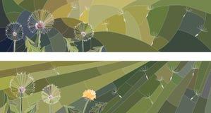 Horizontal illustration of flowers dandelion. Stock Photo