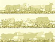 Horizontal illustration of grazing farm pets. Stock Image