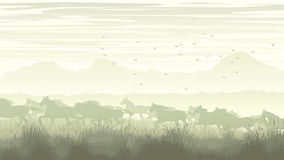 Horizontal illustration of landscape with herd of horses. Royalty Free Stock Image