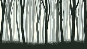 Horizontal illustration with many trunks tree. Stock Photography
