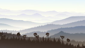 Horizontal illustration of morning misty in forest hills. Horizontal illustration morning misty coniferous forest hills in fog Royalty Free Stock Photography
