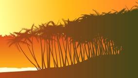 Horizontal illustration palm trees on beach. Royalty Free Stock Photos