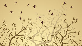 Horizontal illustration of tree branches and birds. Royalty Free Stock Photo