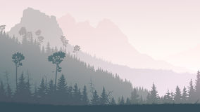 Horizontal illustration of twilight in forest hills. Horizontal illustration morning misty coniferous forest hills with mountains in fog Stock Photography