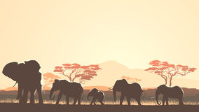 Horizontal illustration of wild animals in African sunset savann Stock Photos