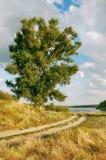 Horizontal imagé Photo libre de droits