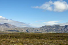 Horizontal islandais Image libre de droits
