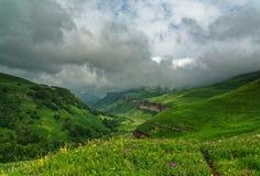 Horizontal lumineux de montagne Vue panoramique des montagnes herbeuses un jour ensoleillé d'été La Russie photos libres de droits