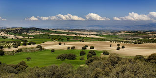 Horizontal méditerranéen vert photo stock