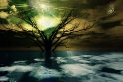 Horizontal magique Photo libre de droits