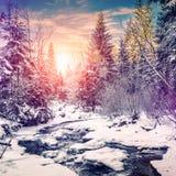Horizontal merveilleux de l'hiver la neige a couvert le pin au-dessus de la rivière de montagne sous la lumière du soleil photo stock