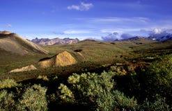 Horizontal montagneux photo libre de droits