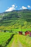 Horizontal montagneux de la Norvège nordique image libre de droits