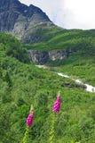 Horizontal montagneux de la Norvège nordique photographie stock
