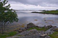 Horizontal montagneux, fjord norvégien image stock