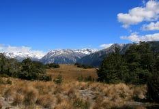 Horizontal montagneux type de la Nouvelle Zélande photos libres de droits