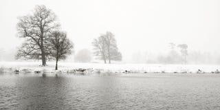 Horizontal morne de l'hiver Photos libres de droits
