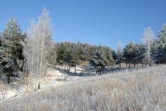 horizontal neigeux Photographie stock libre de droits