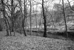 Horizontal noir et blanc Image libre de droits