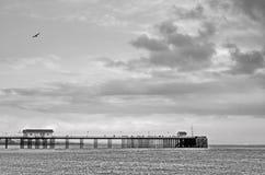 Horizontal noir et blanc de pilier Photos libres de droits
