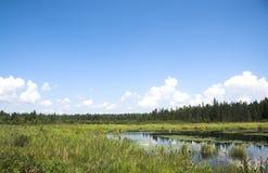 Horizontal nordique Image libre de droits