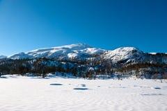 Horizontal norvégien Photo libre de droits