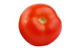 Horizontal one tomato isolated on white background. Whole tomatoes isolated on white background as package design element royalty free stock images