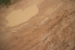 Horizontal overhead medium shot of muddy jungle road with small puddle amid various tire tracks Stock Photo