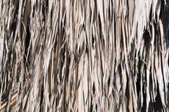 Horizontal palm thatch backgrouind Stock Photo