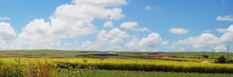 Horizontal panoramique des Îles Maurice Image libre de droits