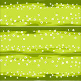Horizontal pattern lawn with daisies Royalty Free Stock Images