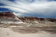 Horizontal peint de désert Photographie stock