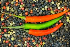 Horizontal pepper chili pepper red green sauce base, design culinary menu decoration Royalty Free Stock Image