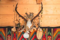 The horizontal photo of the bull skull hanging on the wooden wall decorated with horns, dry plants and vintage style carpet stock images