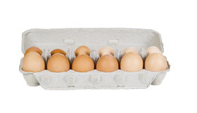 One Dozen Fresh Eggs in Carton on White Royalty Free Stock Images