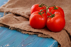 Horizontal photo red juicy tomatoes branch wooden board blue. Stock Images