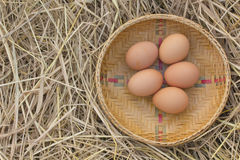 Horizontal photo of several hen eggs which are placed on nice haystack from dried straws and inside wicker basket. Stock Images