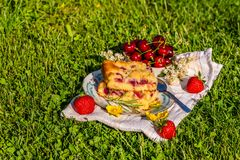 Portion of cherry cake on a towel with strawberries on grass Royalty Free Stock Images