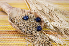 Whole Grain Cereal in Wooden Spoon Stock Image