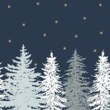 Horizontal pine card with stars Royalty Free Stock Photo