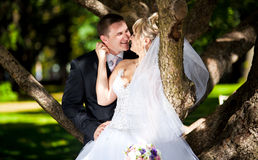Horizontal portrait of newly married couple kissing leaning against tree Royalty Free Stock Image