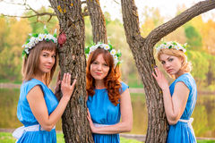 Horizontal portrait of three friends Stock Images