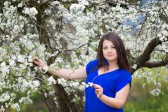 Horizontal portrait of young Caucasian brunette woman near blossoming plum tree, looking to the camera Stock Image