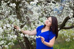 Horizontal portrait of young Caucasian brunette woman near blossoming plum tree, looking up to the sky stock image