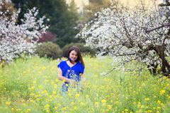 Horizontal portrait of young Caucasian brunette woman near blossoming plum trees in yellow mustard field, looking to the camera stock photo