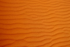 Horizontal prints in desert Royalty Free Stock Photo