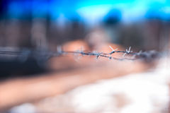 Horizontal prison jail barbed wire background. Hd Royalty Free Stock Photos