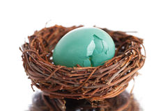 Broken Robins Egg in a Nest. Horizontal of a real robins egg in a tiny nest setting on a reflective surface with a white background royalty free stock photography